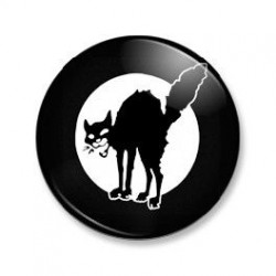 Badge BMW